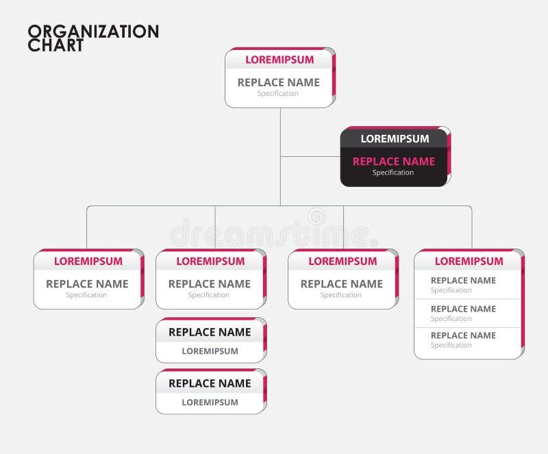 Organization chart infographics with tree. vector illustration. Stock stock illustration