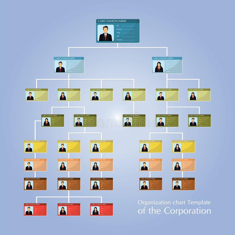 Organizational corporate flow chart template of the corporation business hierarchy vector illustration