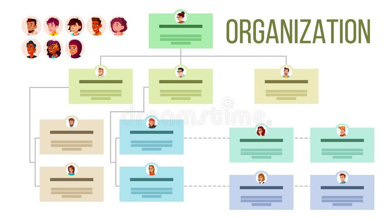 Organizational Structure, Company Organogram, Flowchart Vector Layout. Organizational Tree, Professional Hierarchy. Corporate Network. Business Organization royalty free illustration