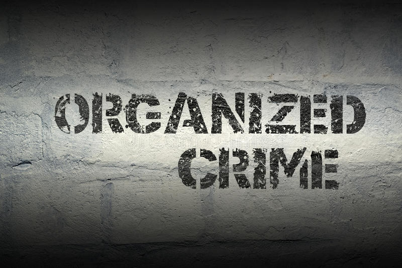 Organized crime gr. Organized crime stencil print on the grunge white brick wall royalty free stock photo