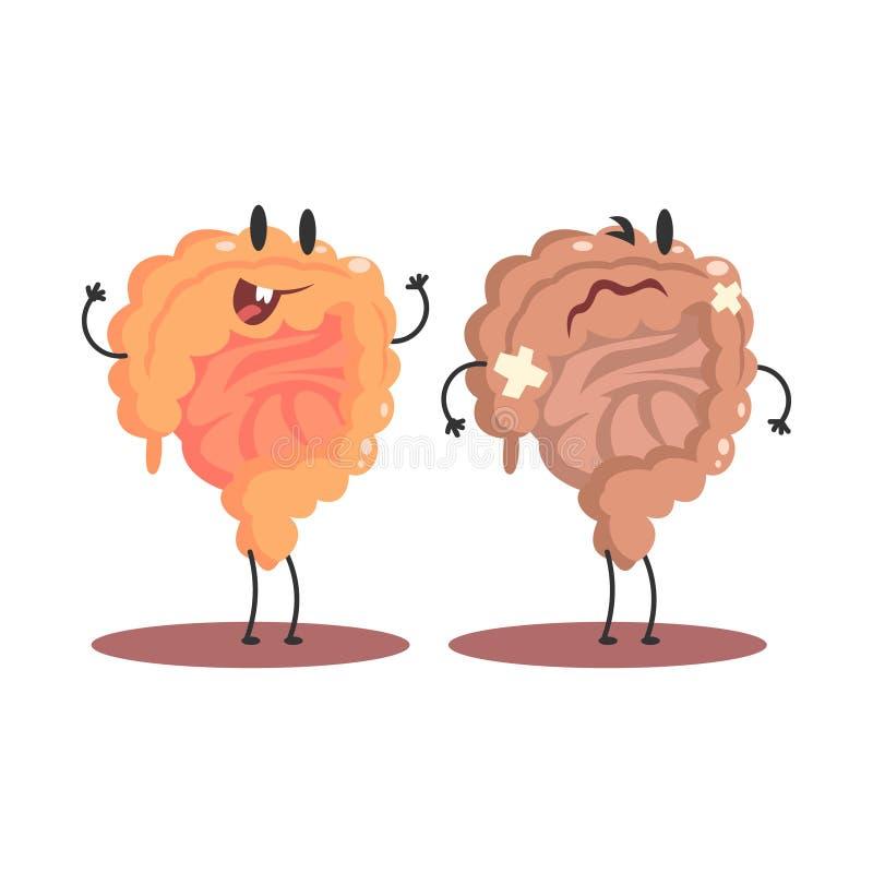 Organo interno umano dell'intestino crasso sano contro le paia divertenti anatomiche non sane e mediche del personaggio dei carto illustrazione di stock