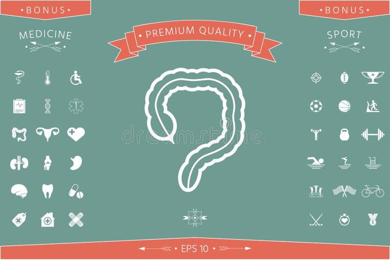Organo umano - l'icona dell'intestino crasso royalty illustrazione gratis