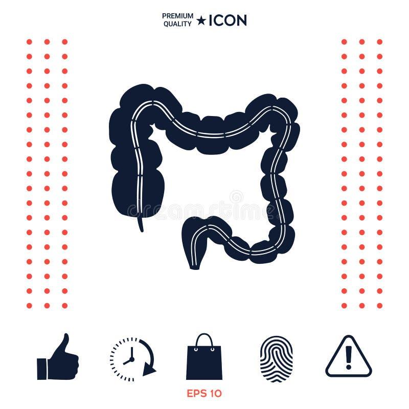 Download Organo Umano - L'intestino Crasso Illustrazione Vettoriale - Illustrazione di arte, anatomia: 117975611