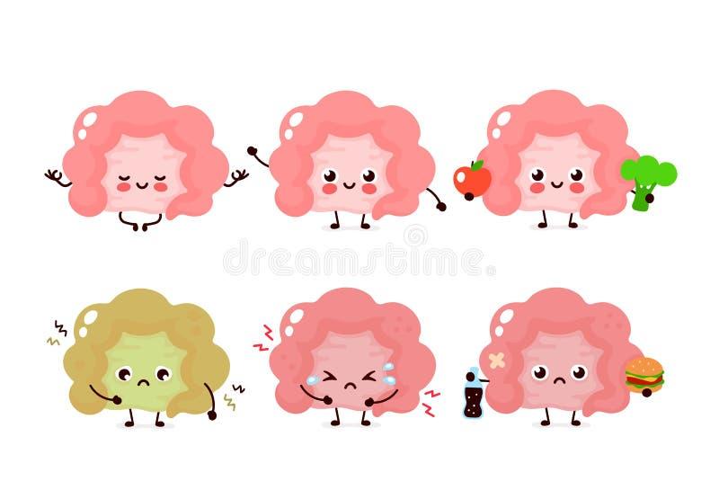 Organo umano sano e non sano dell'intestino illustrazione di stock