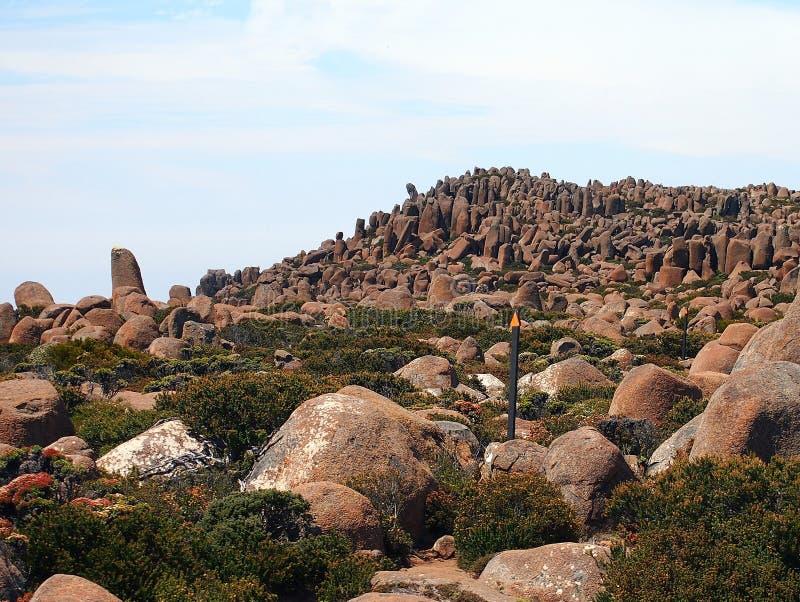 Organowej drymby Rockowe formacje, góra Wellington obrazy stock