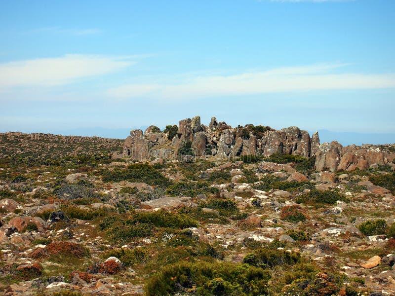 Organowej drymby Rockowe formacje, góra Wellington zdjęcia royalty free