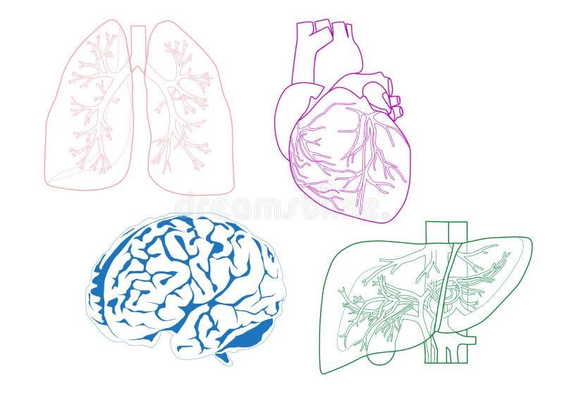 Organy royalty ilustracja