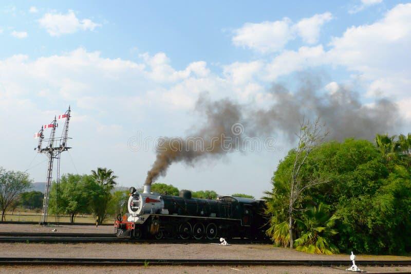 Orgullo del tren de África alrededor a salir de la estación capital del parque en Pretoria, Suráfrica fotografía de archivo libre de regalías