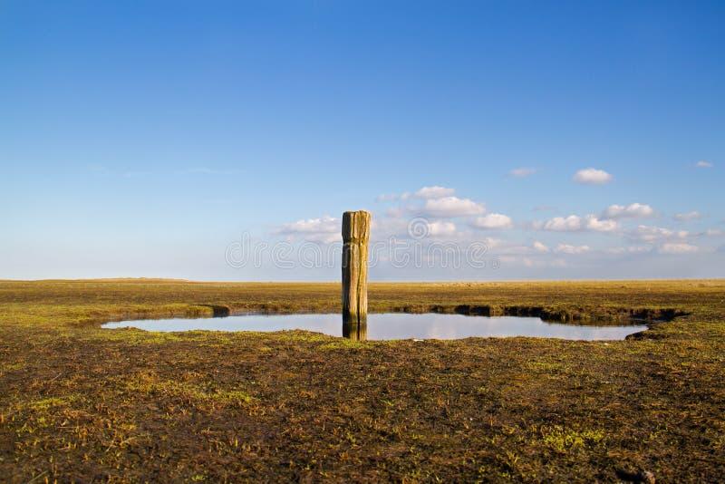 Oriëntatiepunt in estuarine landschap stock foto