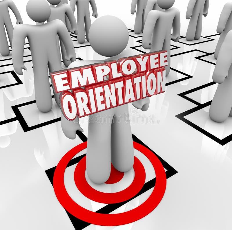 A orientação de empregado exprime o organograma novo do trabalhador ilustração do vetor