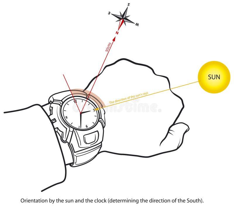 Orientação - sul ilustração do vetor