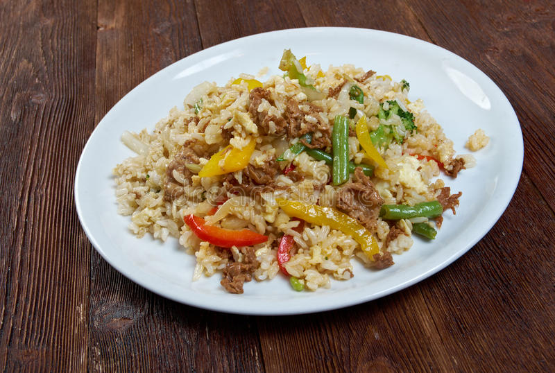 Orientały smażący ryż tyahan - obrazy stock