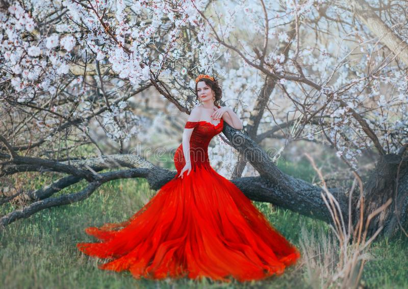 Oriental beauty queen in red dress silhouette of a mermaid with a long train, sitting on a branch of a flowering tree stock image