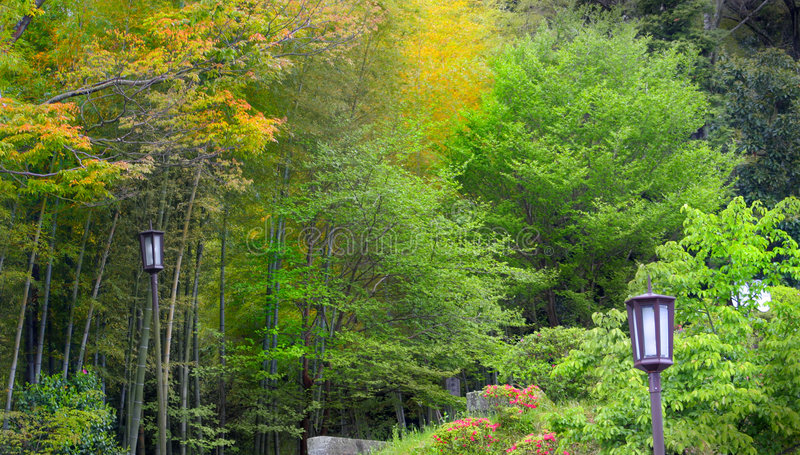 Oriental Garden. Lush green Japanese garden picture royalty free stock photography