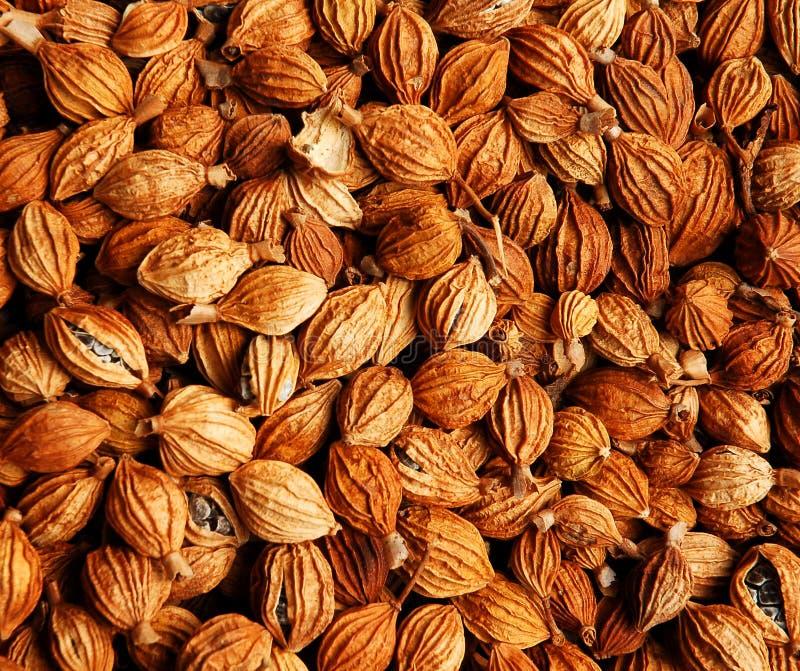 Download Oriental Medicine Herbs Stock Photos - Image: 2084923