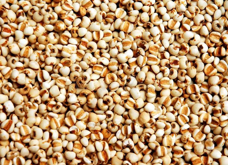 Oriental medicine herbs stock photos