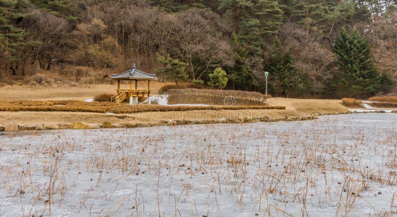 Orientalischer Gazebo auf Rand von einem gefrorenen Teich stockbild