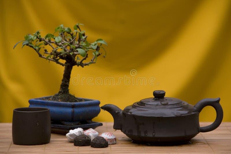 Orientalisches Tee-Set stockbild
