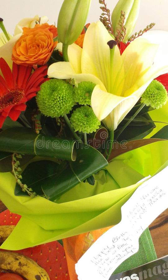 Orientaliska lillies royaltyfria bilder