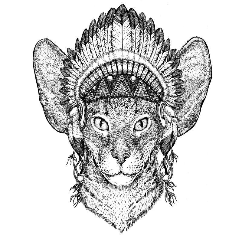 Orientalny kot z dużym ucho dzikim zwierzęciem jest ubranym indyjskiego kapeluszowego pióropusz z piórka Boho etnicznego wizerunk ilustracja wektor