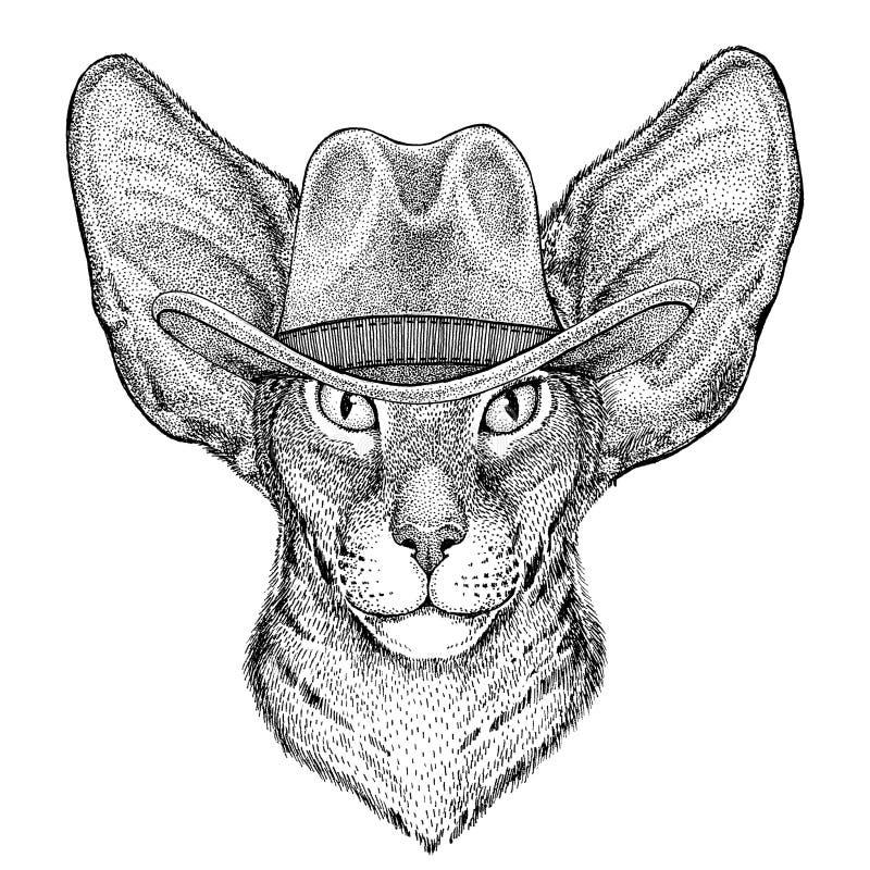 Orientalny kot z dużym ucho dzikim zwierzęciem jest ubranym kowbojski kapelusz Dziką zachodnią zwierzęcą Kowbojską zwierzęcą kosz royalty ilustracja