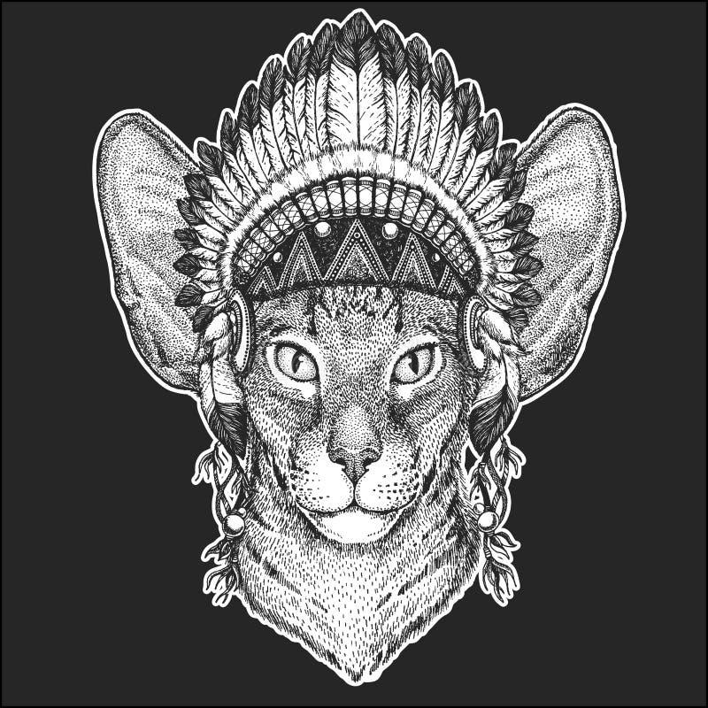Orientalny kot z dużymi ucho Cool zwierzęcego jest ubranym rodowitego amerykanina indyjskiego pióropusz z piórka Boho szyka stylu ilustracja wektor