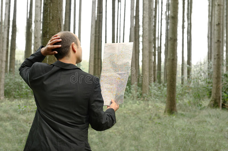 Download Orientation stock photo. Image of path, stray, strayed - 11795192