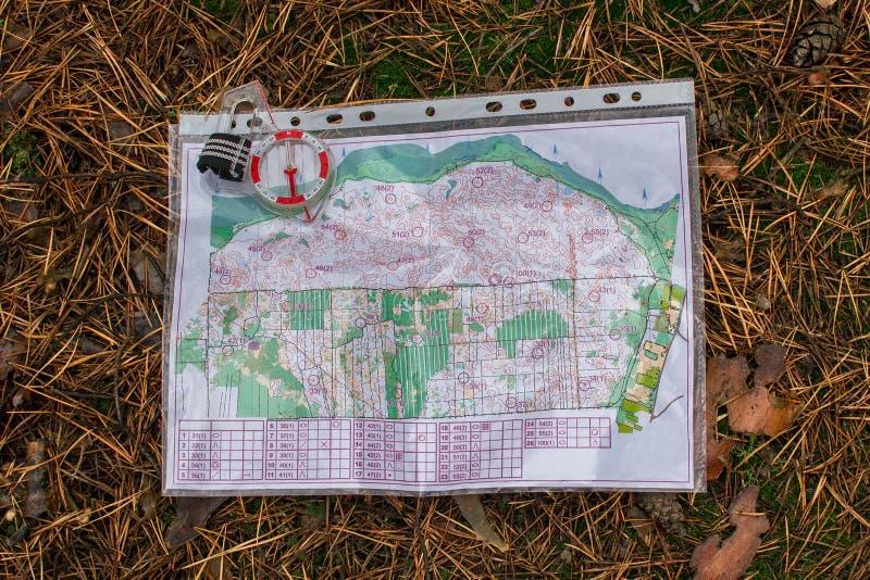 orienteering Compasso e mapa para a mentira orienteering do esporte na floresta em uma agulha caída do outono O conceito foto de stock royalty free