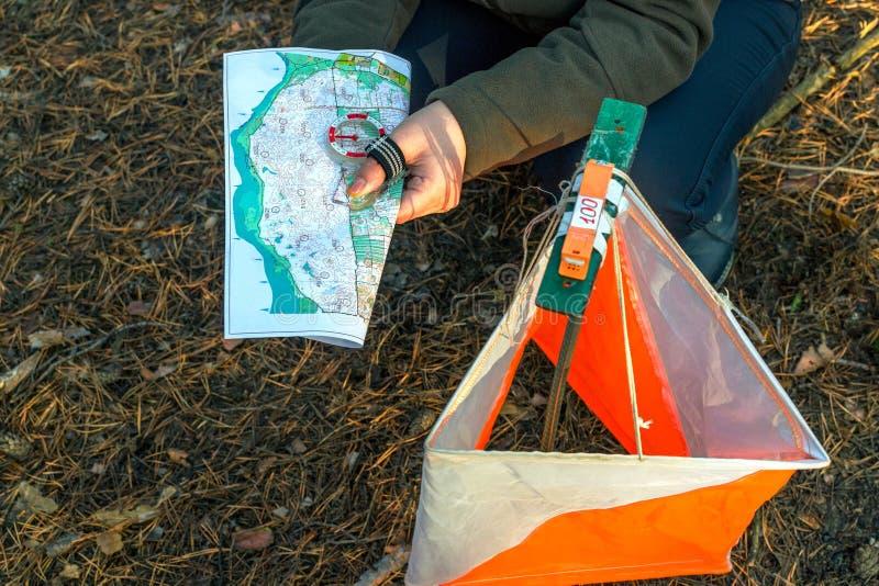 orienteering Compasso, mapa, prisma do ponto de verificação e composter para orienteering na floresta em agulhas caídas do outono imagem de stock royalty free