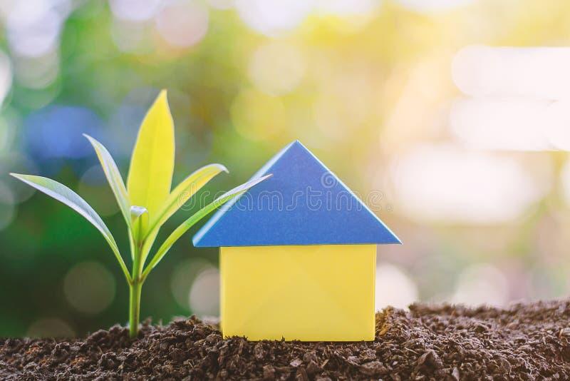 Origâmi de papel e planta da casa que crescem do solo contra borrado foto de stock royalty free
