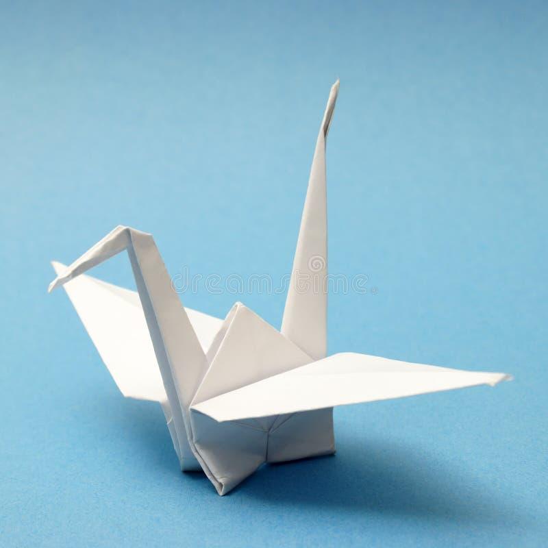 Origami łabędź zdjęcia royalty free