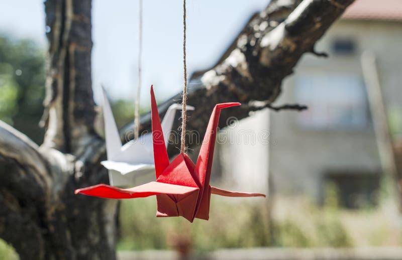 Origami żurawie w ogródzie zdjęcie royalty free