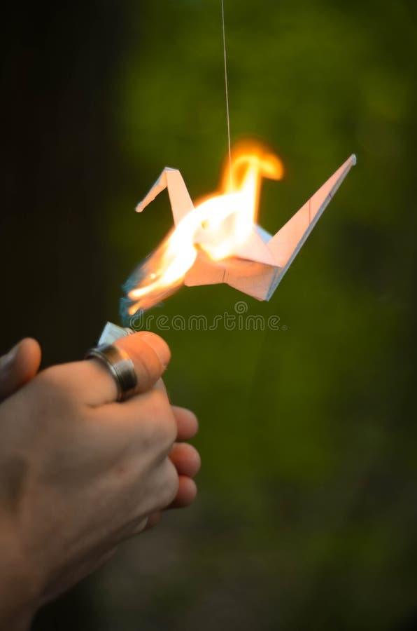 origami obrazy royalty free