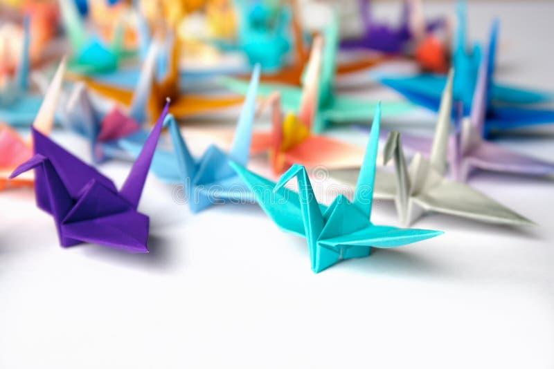 Download Origami birds stock photo. Image of discipline, follow - 2678736