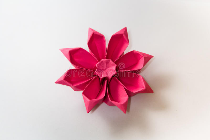 Origami blomma royaltyfri foto