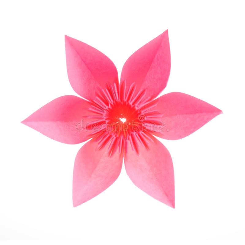 Origami flower stock photography