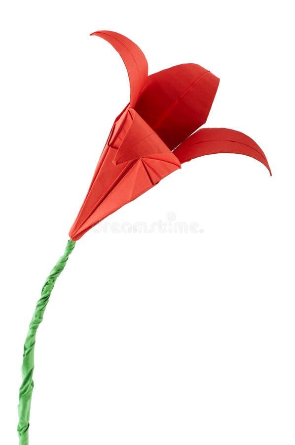 Origami kwiatu czerwony biel odizolowywający. zdjęcie stock