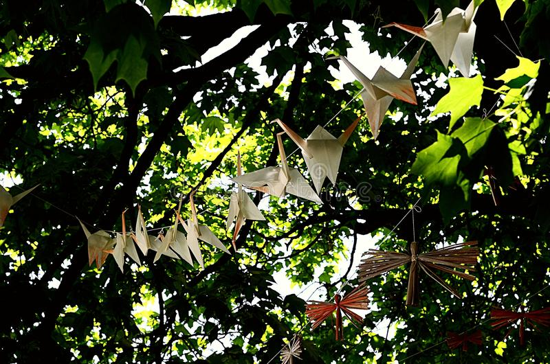 Origami. Hanging on a tree branch. Nature royalty free stock photos