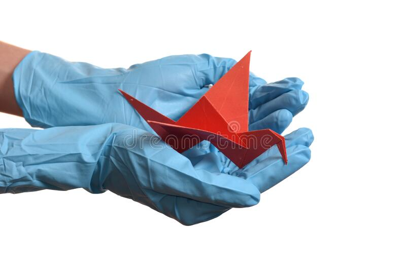 Origami paper crane in hand with rubber gloves. Over white stock images