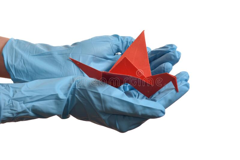 Origami paper crane in hand with rubber gloves. Over white royalty free stock photo