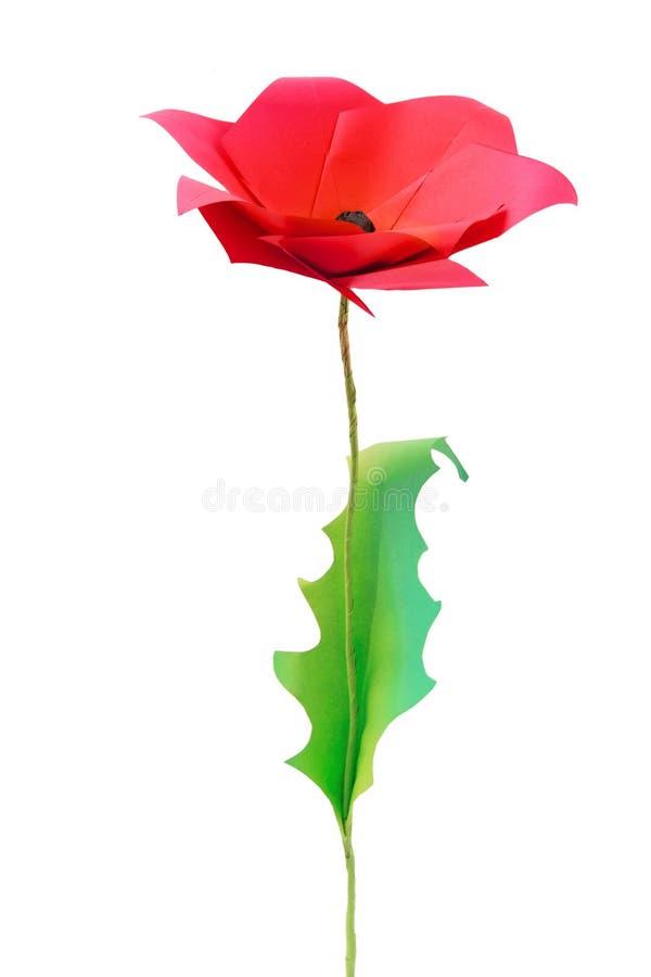 Origami poppy flower. On a white bakground stock photo