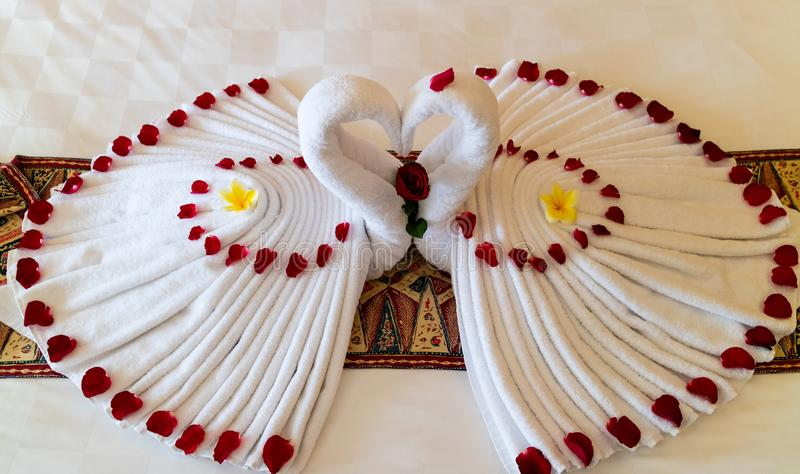 Origami swans made out of towels and laid out on a bed in a honeymoon suite royalty free stock photos