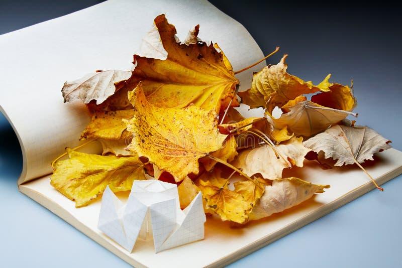 Origami und Herbstblätter lizenzfreies stockfoto