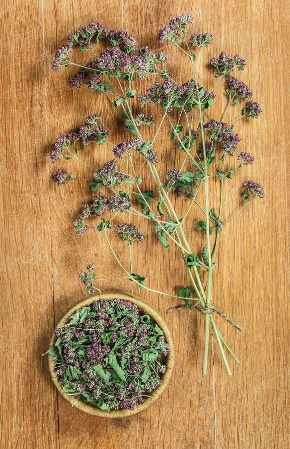 origan Herbes sèches Phytothérapie, médicinal phytotherapy il images stock