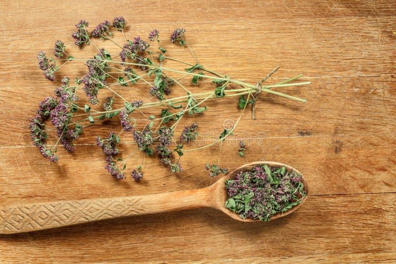 origan Herbes sèches Phytothérapie, médicinal phytotherapy il photographie stock