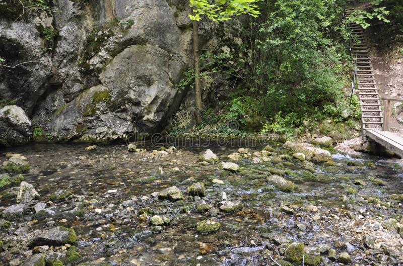 Origen de la cascada de Bigar de Caras-Severin en Rumania imagen de archivo