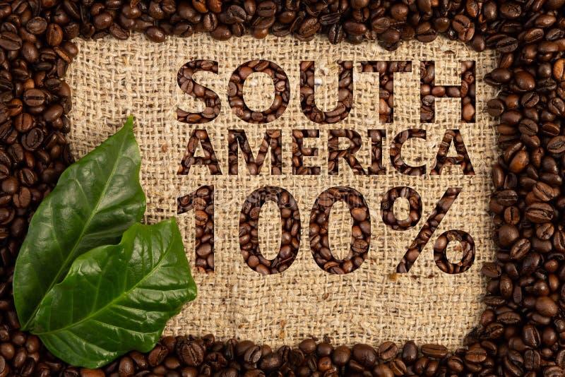 Origen de Suramérica del concepto del café imagen de archivo