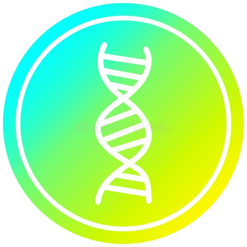 A creative DNA chain circular in cold gradient spectrum. An original creative DNA chain circular in cold gradient spectrum royalty free illustration