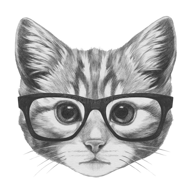 Original Drawing Of Cat With Glasses Stock Illustration
