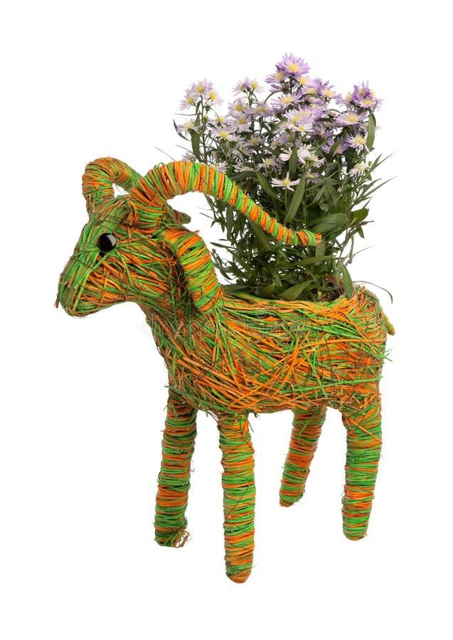 Download Original flowerpot stock photo. Image of plant, decorative - 23538674